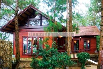 Nhà gỗ hiện đại trên đồi thông xanh mướt